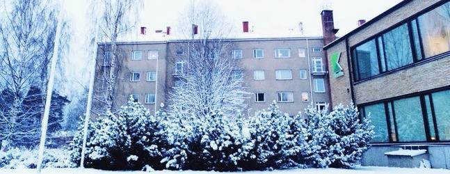 Университет прикладных наук Карелия г. Йоэнсуу