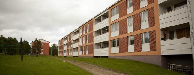 Отзыв, Егор: общежитие в школе Салла