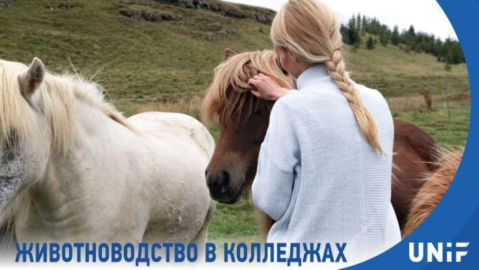Программа по специальности «Животноводство»