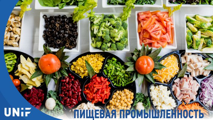 Программа обучения «Специалист пищевой промышленности» в колледже Sedu