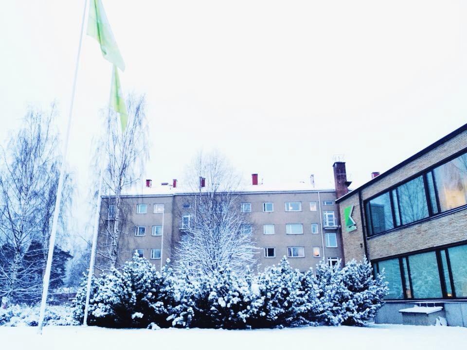 Отзывы студентов об учебе в финляндии