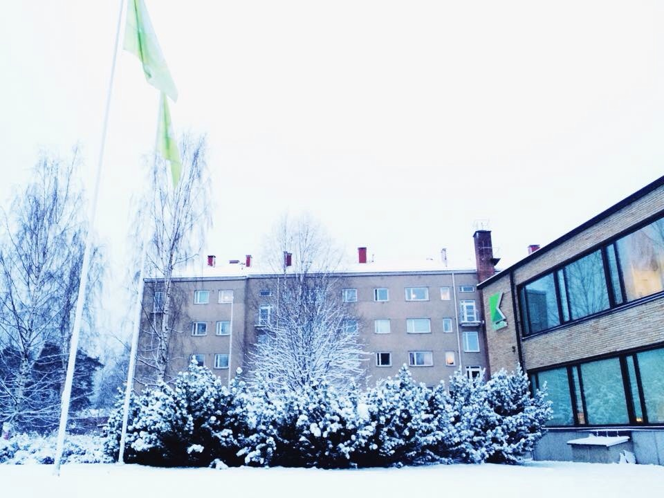 Университет Карелия (Финляндия)