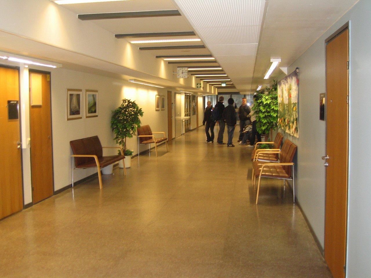 Университет Миккели изнутри